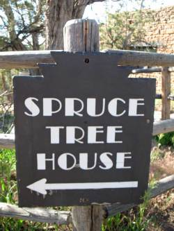Mesa Verde - Spruce Tree House